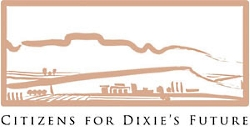 Citizens for Dixie's Future