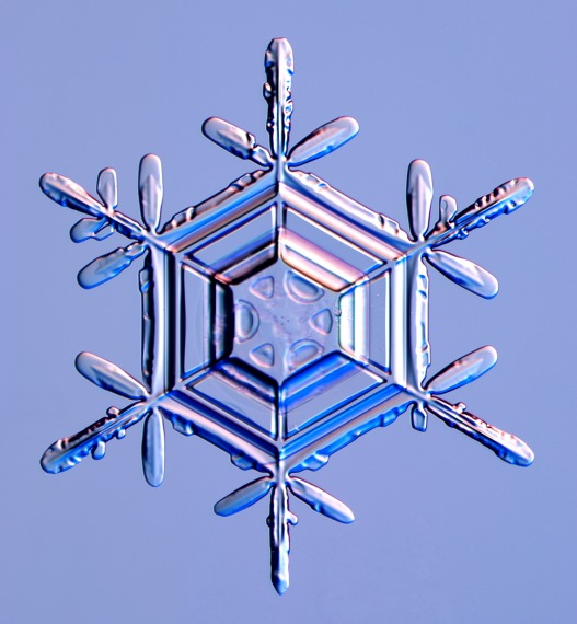 A stellar dendrite snow crystal, Photo Courtesy and Copyright Kenneth Libbrecht, Caltech University, SnowCrystals.com