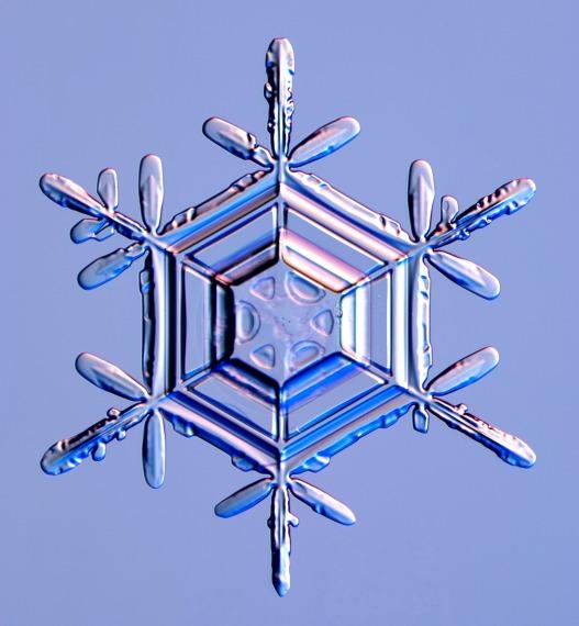 A stellar dendrite snow crystal, Photo Courtesy and Copyright Kenneth Libbrecht, Caltech University, SnowCrystals.com