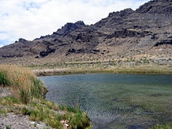 North Spring, Fish Springs National Wildlife Refuge, Utah. Courtesy Utah Geological Survey