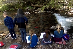 Edith Bowen third graders watch Kokanee Salmon in Cinnamon Creek Courtesy and Copyright Josh Boling