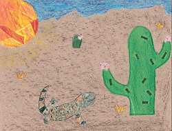 Asher's Gila Monster Courtesy & Copyright EBLS (Full Student Name Redacted)