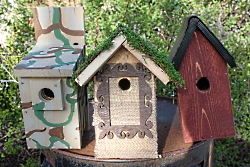 Bird Houses Courtesy & Copyright Ron Hellstern