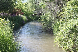 A Flowing Stream, Conserving Water Starts at Home, Courtesy and Copyright Ron Hellstern, Photographer