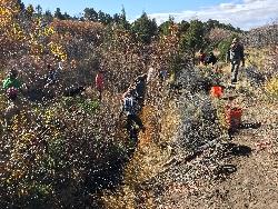 In-stream Habitat Structures: Crews from multiple agencies building in-stream structures to restore Birch Creek. Courtesy & Copyright Shauna Leavitt, Photographer