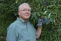 Ron Hellstern with Elderberries Courtesy and Copyright Morgan Pratt, Photographer