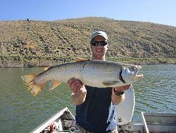 Trout vs. Chub: Undergraduate student Konrad Hafen holds a mature Tiger trout which preys on the Utah chub.