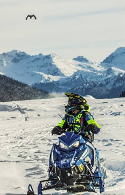 Enjoying Utah's Backcountry with Snowmobiles: Enjoy Viewing Wildlife via Snowmobile Courtesy & Copyright Sebastian Voortman, Photographer