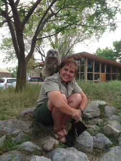 Winston, a Young Great Horned Owl hopped up on Michelle Groncki's Shoulder May 16, 2018 Courtesy & © Lyle Bingham, Photographer