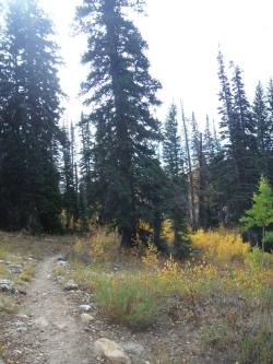 Jardine Juniper trail, Courtesy & © Josh Boling, Photographer
