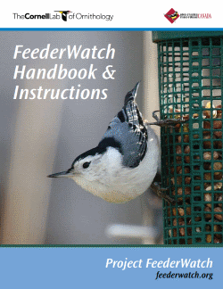 Feederwatch Handbook and Instructions Project Feederwatch, Cornell Lab of Ornithology, Click to view the .pdf