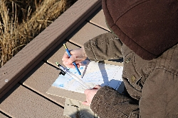 Recording Observations at the Bear River Migratory Bird Refuge Courtesy & Copyright Edith Bowen Laboratory School(EBLS) Experiential Learning Eric Newel Director & Photographer