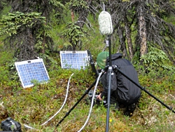 Checking sound equipment set up near the McKinley Bar Trail, Denali National Park Courtesy US NPS