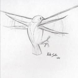 A Pretty Decent Salve: [Watching a] Bird Landing Courtesy & © Rob Soto, Artist