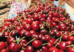 US Cherries for sale in Korea Courtesy USDA